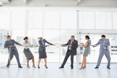 Business team pulling the rope. In the office Royalty Free Stock Photos
