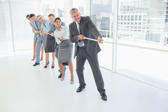 Business team pulling the rope. In the office Stock Photography