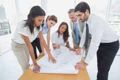 Business team reading work plans Stock Images