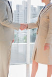 Business team shaking hands Royalty Free Stock Images