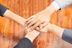 Business team showing unity with their hands together Royalty Free Stock Photos