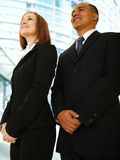 Business Team Smiling Looking  Stock Images