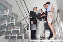Business team in stairway. Business team talking to each other in office stairway Stock Images