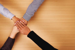 Business team standing hands together in the office with copy space. Stock Photo