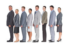 Business team standing in row and smiling at camera Stock Images
