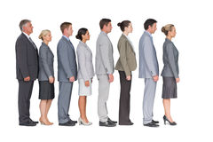 Business team standing in row Stock Photos