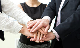 Business team with their hands. Stock Photography