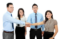 Business team with their hands together. Isolated over a white background Stock Images