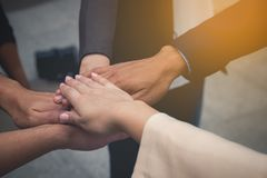 Business team work concept : business people hold hand together Royalty Free Stock Photos