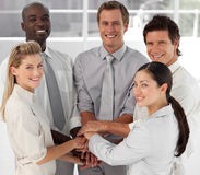 Business team working together Royalty Free Stock Image