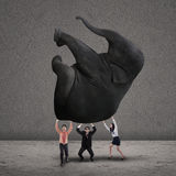 Business teamwork lifting elephant on grey Royalty Free Stock Photography