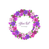Business template round floral design. Floral template birthday, Valentines day. Round garland pink, purple and striped petunias on white background. Boutique Royalty Free Stock Photography