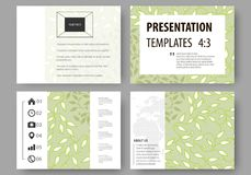 Business templates, presentation slides. Easy editable layouts, flat design. Green color background with leaves. Spa. Set of business templates for presentation Stock Photography