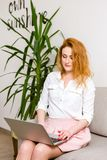 Business and training. beautiful young red haired long hair Caucasian woman uses laptop while sitting on sofa in room. She is dres royalty free stock image