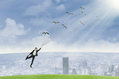 Business travel by using birds 1 Stock Images
