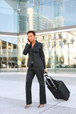 business travelling woman Στοκ Εικόνες