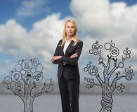 Business tree Stock Photo
