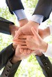 Business union. Bottom view of people hands holding together on background of green foliage Royalty Free Stock Photography