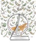 Business Money Wheel Gig Economy Waste Time. A mouse on an exercise wheel with money raining down Stock Images
