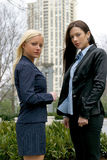 Business Woman. Two Business Women royalty free stock photo