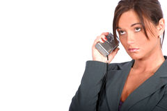 Business Woman. Today's Business Woman stock image