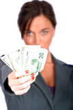 Business Woman. Today's Business Woman stock photos