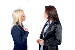 Business Woman. Two business Women royalty free stock photos