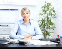 Business woman. Pretty business woman working at office royalty free stock images