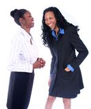 Business Woman. African American Business Woman stock image