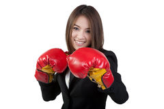 Business woman Attractive Boxing glove suit isolated Royalty Free Stock Images