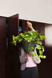 Business woman carrying plant Royalty Free Stock Photos