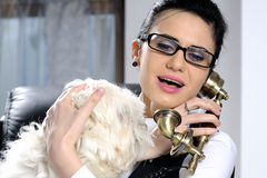 Business woman and dog Royalty Free Stock Images