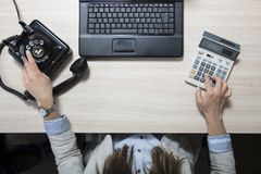 Business woman doing calculations and dialing a phone number. Woman in the  office situation Stock Photography