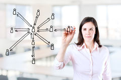 Business woman drawing social network structure. Stock Images