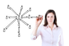 Business woman drawing social network structure. Stock Photos