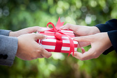 Business woman hand with christmas gift box. On green bokeh background Royalty Free Stock Photography