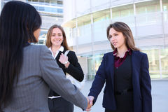 Business Woman Handshake Stock Image