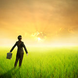 Business woman holding bag in green rice field and sunset Royalty Free Stock Image