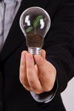 Business Woman Holding Light Bulb with Growing Plant Stock Photo