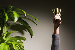 Business woman holding up trophy Royalty Free Stock Photo