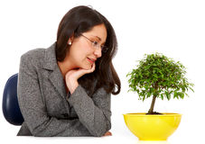Business woman hoping for growth Royalty Free Stock Images