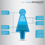 Business woman info graphic. Modern human woman figurine with graphic value presentation inside, smart businessman info graphic concept, vector illustration Stock Photo