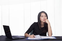 Business woman and laptop Stock Photos
