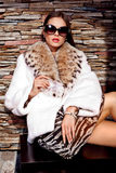 Business Woman in Luxury lynx fur coat. Behind brick wall stock image
