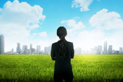 Business woman on the meadow. Backview of asian business woman on the meadow Stock Photos