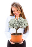 Business woman with a money tree Stock Images