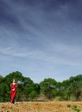 Business Woman outdoors. A picture of a business woman outdoor Royalty Free Stock Images