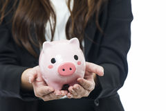 Business woman with a piggy bank to get hold dollars Stock Image