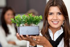Business woman with a plant Royalty Free Stock Photos