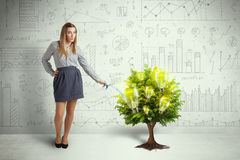 Business woman pouring water on lightbulb growing tree Royalty Free Stock Images
